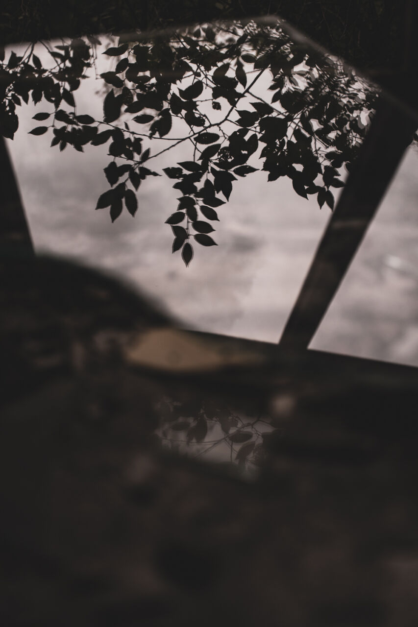 029__Grodzisk__016